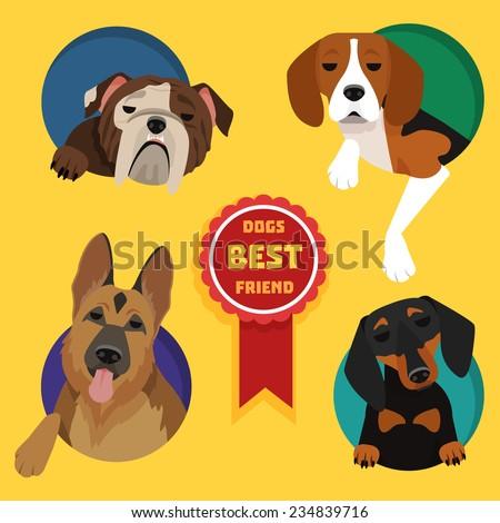 Set of different dog breeds. German Shepherd, Dachshund, English bulldog, Beagle - stock vector