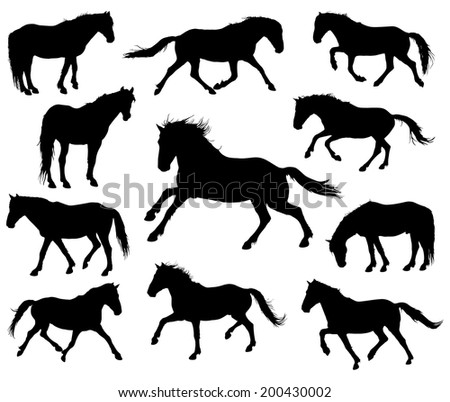 Set of 11 different moving horses silhouettes. - stock vector