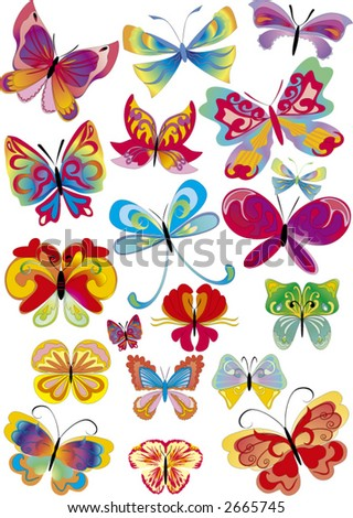 set of different multicolored butterflies -  vector