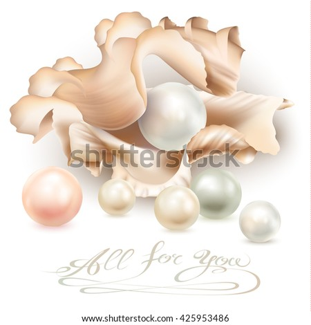 Set of different pearls in an open shell, isolated on a white background. Vector illustration - stock vector