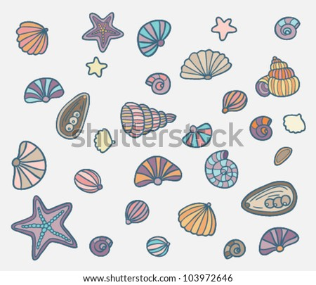Set of different sea shells - stock vector