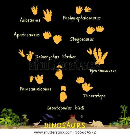 Set of dinosaur fossil footprints. Dino paws. Dinosaur footprint image. Dinosaur footprint picture. Dinosaur footprint EPS. Dinosaur footprint JPEG. Dinosaur footprint Vector Illustration.  - stock vector