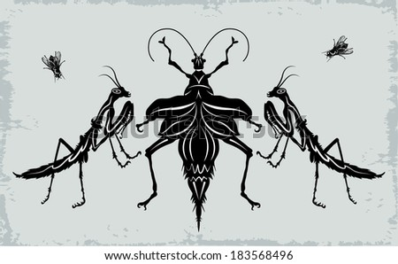 Set of diverse insects: mantises, beetle and fly.