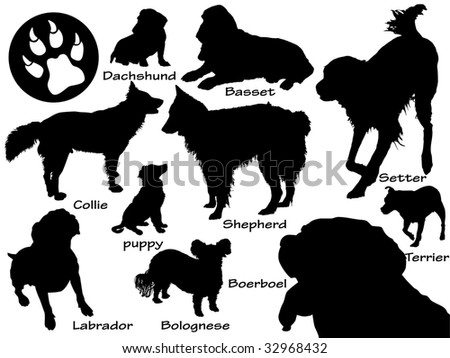 set of dogs - stock vector