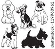 set of dogs,black and white vector collection with small breeds,pictures isolated on white background - stock vector
