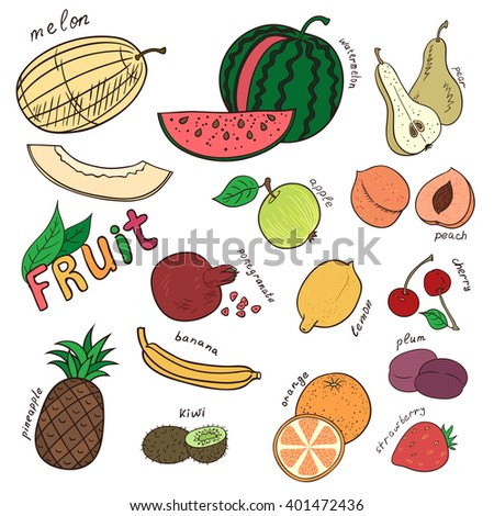Set of doodles fruits.  - stock vector