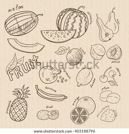 Set of doodles fruits. Outline.  - stock vector