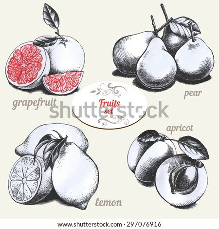 Set of drawings fruits  - stock vector