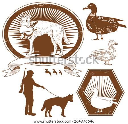 Set of Duck hunting vector illustration - stock vector