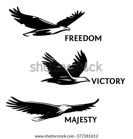 Set of eagles, painted with a brush. Silhouettes of birds of prey soaring in the sky. The logo, a symbol of greatness, victory and freedom. - stock vector