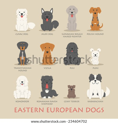 Set of eastern european dogs , eps10 vector format - stock vector