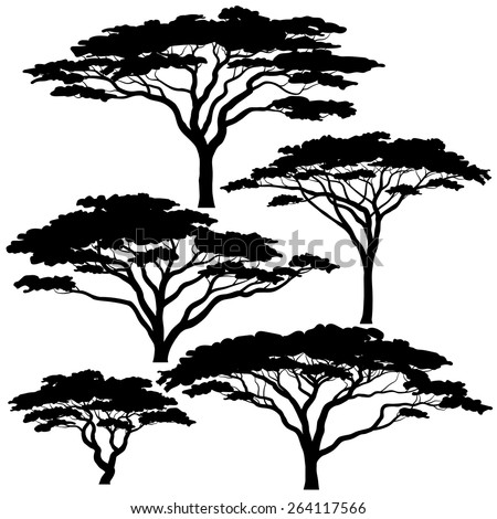 Set of eps8 editable vector silhouettes of acacia trees - stock vector