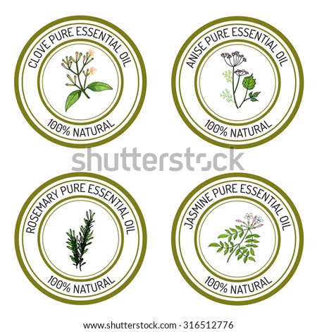 Set of essential oil labels: clove; anise; rosemary; jasmine. Vector illustration