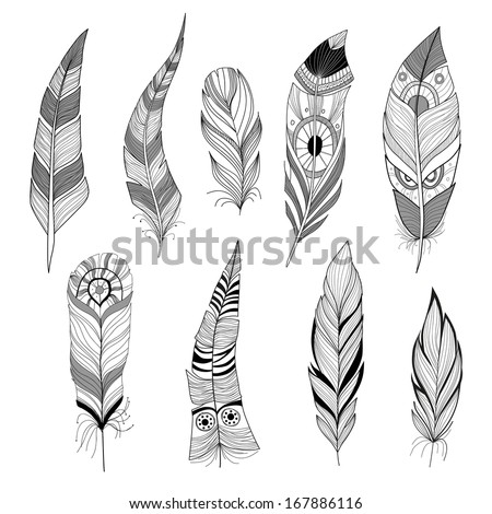 Set of feathers - stock vector