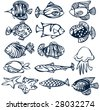 Set of fishes. - stock vector