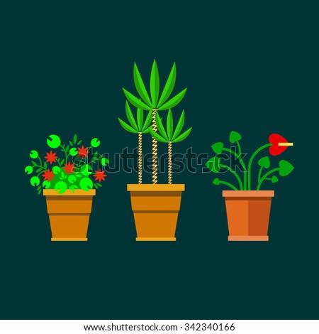 Set of flat flowers. Flowers in pots - vector illustration. - stock vector