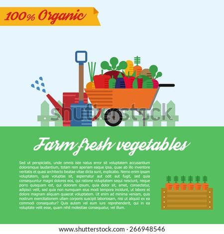 Set of flat vector garden elements. Fresh farm vegetables. Cartoon icons. Agriculture illustration. Nature healthy plant. Organic design - stock vector