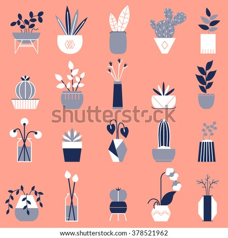 Set of flat vector house plants. Cute vector illustration.