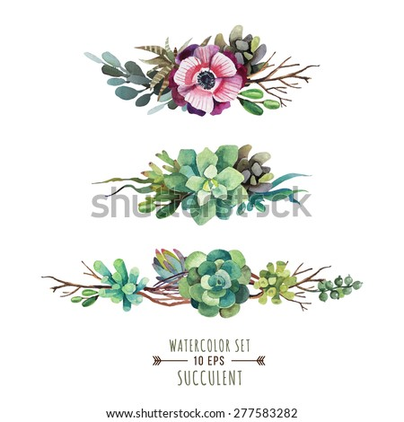 Set of floral compositions in watercolor style. Composition of succulents, flowers and branches. Boutonnieres of succulents. Vintage elements for invitations, greeting cards, covers and other items. - stock vector