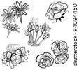 Set of floral design elements -  flowers - stock vector