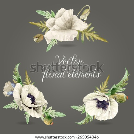 Set of floral elements for design. Vector illustration of white poppies, buds, leaves. Watercolor flowers.