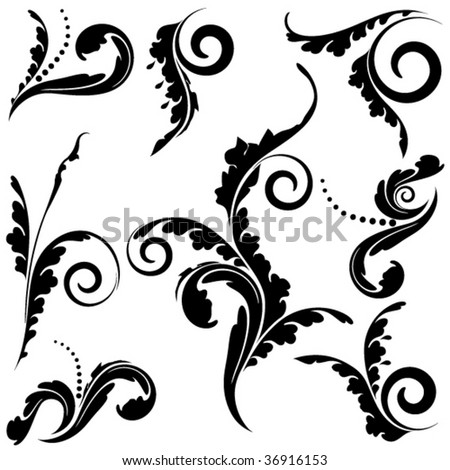 set of floral elements vector - stock vector