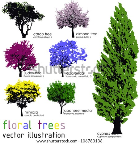 Set of floral trees silhouettes. Vector illustration - stock vector