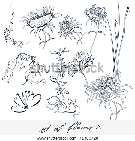 Set of flowers 2 - stock vector