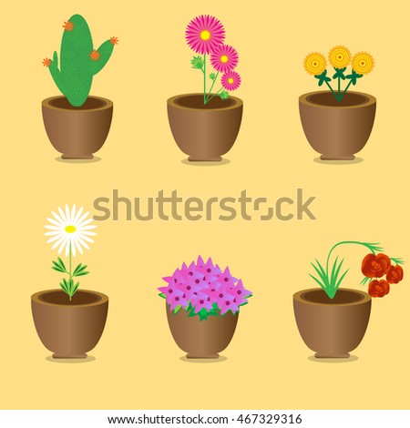 Set of flowers in pots
