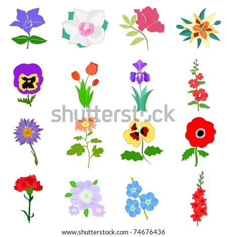 Set of flowers. Vector - stock vector
