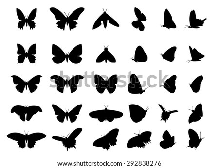 Set of flying butterfly silhouette, isolated vector object on white background. Top view and side view. - stock vector