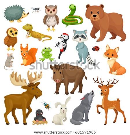 set forest animals birds cartoon style stock vector woodland animals baby shower clipart Woodland Baby Shower Clip Art