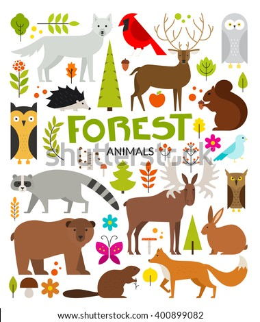 Set of forest animals made in flat style vector. Zoo cartoon collection for children books and posters. Wolf, reindeer, moose, racoon, fox,bear and other mammals. Each animal isolated and easy to use. - stock vector