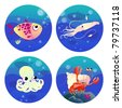 Set of four cartoon illustrations related to sea life - fish, calamari, octopus and soldier crab - stock vector