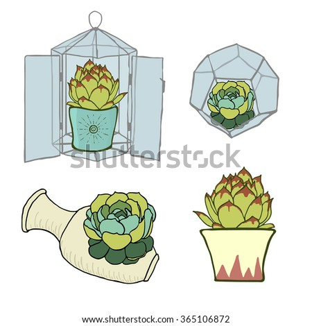 Set of four green succulents - inside geometric glass terrarium and in ceramic ptanters. Stainedglass terrarium with cactus. Modern style florariums isolated on white - stock vector
