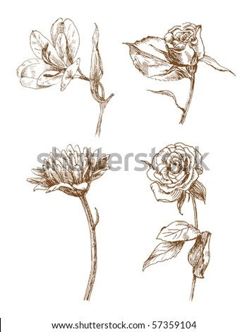 set of four old-styled vector flowers. - stock vector