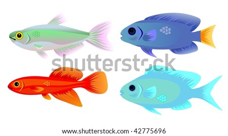 Set of Four Tropical Fish