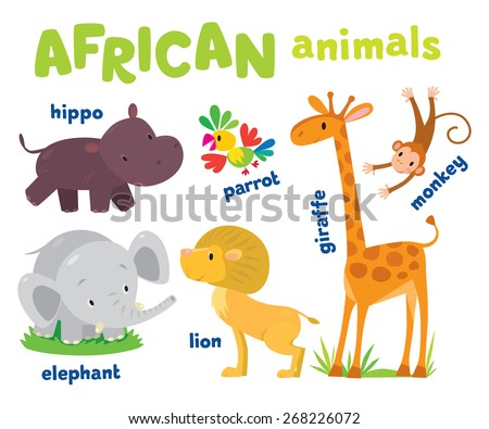 Set of funny cute african animals, hippo and parrot, elephant and lion, giraffe and monkey - stock vector