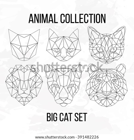 Set of geometric cat tiger lion puma head isolated on white background vintage vector design element illustration