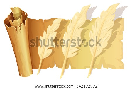 Set of goose feather on scroll of parchment - stock vector