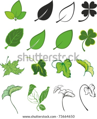 Set of  green leaf icons