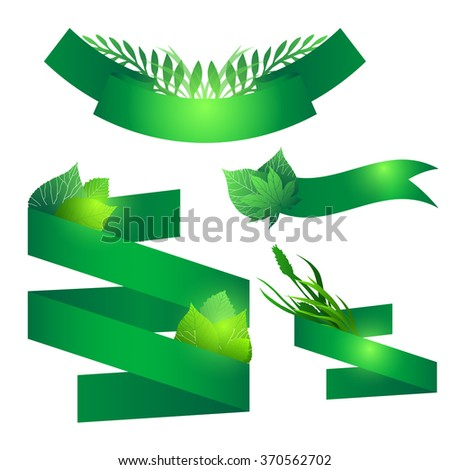 Set of green ribbons with leaves. Vector element for your design - stock vector