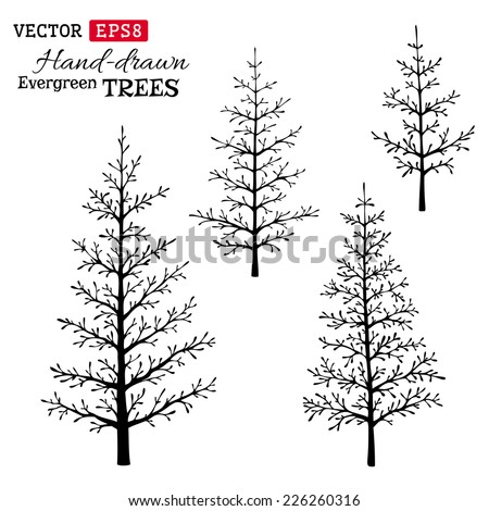 Set of hand-drawn evergreen trees. Black silhouettes isolated on white background. - stock vector