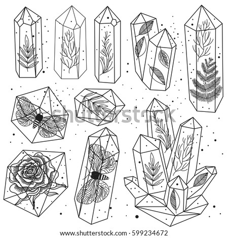 Set of hand drawn line art crystals and leafs, moths, rose inside gems, isolated objects. Black and white transparent terrariums. Magic fairytale Halloween theme. Vector illustration.