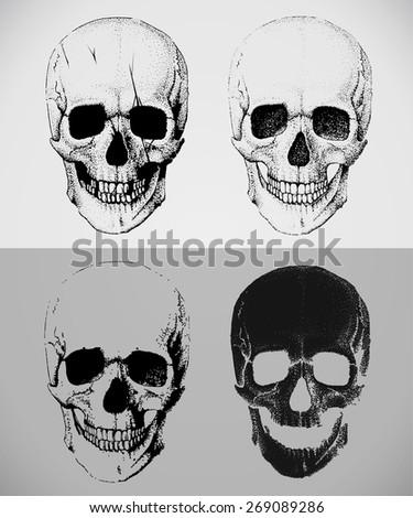 set of hand drawn skulls - stock vector