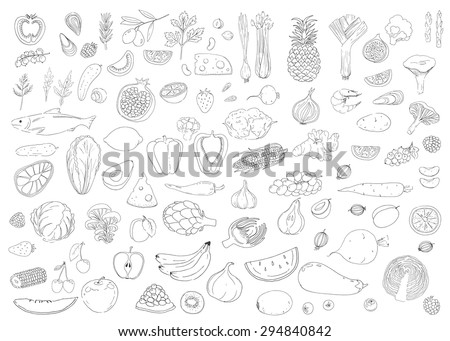 Set of healthy food. Fish, cheese, herb, vegetables, fruit, berries. Linear hand drawn elements. - stock vector