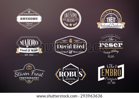 Set of Hipster Retro Badges, Labels, Logotypes. Vector Design Templates - stock vector