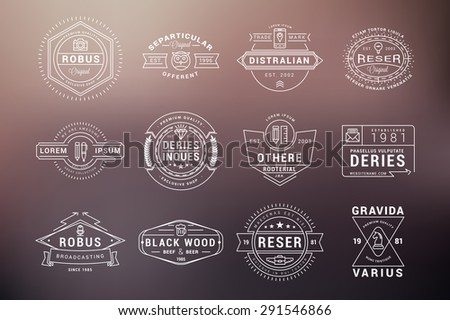 Set of Hipster Vintage Labels, Logotypes, Badges. Thin Line Design Templates on blurred background - stock vector