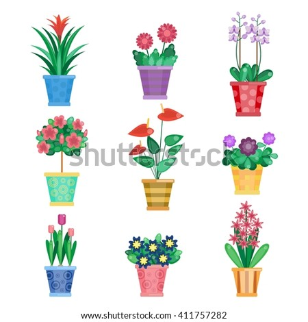Set of houseplant, home interior flowers and office plants in pot. Tulip and viola, gerbera and orchids. Summer spring collection. Vector illustration by flat style