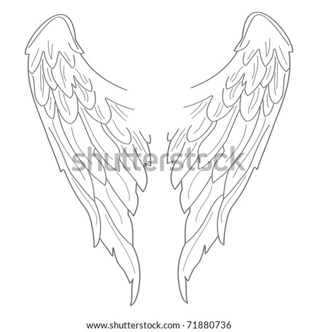 Set of illustrated wings. Easy to edit and scale to any size. - stock vector